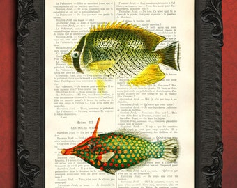 tropical fish print red green spots fish yellow fish illustration