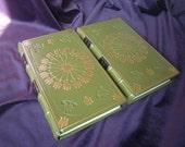 Beautiful Fine Bookbinding / Scarce James Hogg BROWNIE OF BODSBECK 1st ed 1818