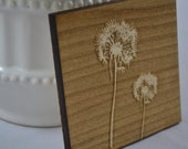 Modern dandelion laser engraved maple wood coasters (set of 4)