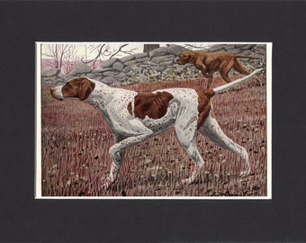 Pointer 1919  Vintage Dog Print by Louis Agassiz Fuertes Small Print of a Signed Painting -  Mounted with Mat