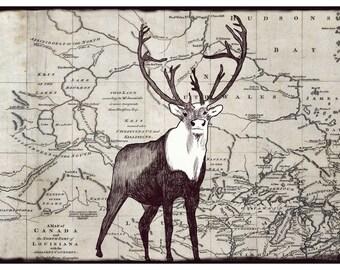 Caribou on a vintage map // Buy 2 prints, get 1 Free