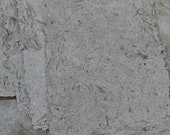 This is handmade paper from Banana tree  . It is oversized 9x13 so could be cut to that size.