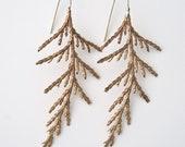 Bronze Cedar Fronds