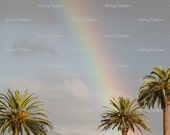 The Smile of Rainbows and Palm Trees