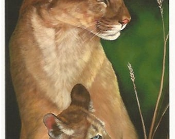 Cougar & Cub, Mountain Lion and Cub card