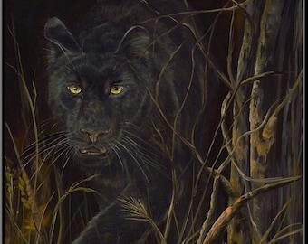 """David's  Black Leopard 12"""" x 16"""" Print"""