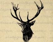 Printable Image Antique Deer Digital Download Deer with Antlers Illustration Graphic Vintage Clip Art for Transfers etc HQ 300dpi No.1985