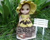 Blythe dress  outfit country style