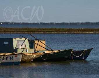 Apalachicola Oyster Boats in a Line (canvas)