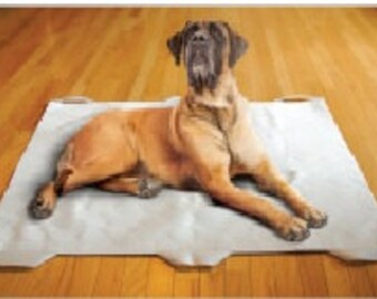 Doggie Bed Sled for your disabled pet