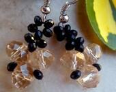 Crystal beadwork earrings