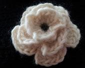 Fleurs au crochet, Crochet Flowers