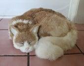 Brown Tan Sleeping Cat Adorable Furry Animal Taxidermy Figurine Decor Kitty