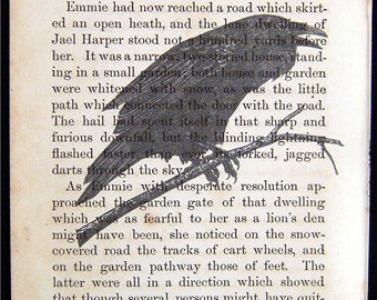 "Vintage Prints On Vintage Pages ""The Raven"""