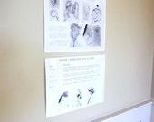 Vintage Laboratory Wall Charts Duke University