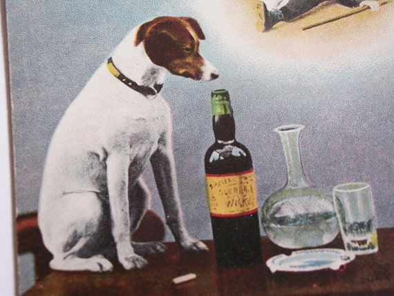 "Antique Postcard - Prohibition ""Where Have I Smelt This Before"" Jack Russell Terrier - Stone Lithograph"