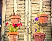 Provence French Country France Photograph. Flower Pots Hanging on French Shutters - Le Thoronet - fotostrudel