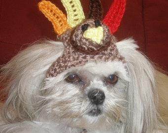 Dog hat - TURKEY - Thanksgiving pet hat - Humorous - 2 to 20 lb pets -  need measurement