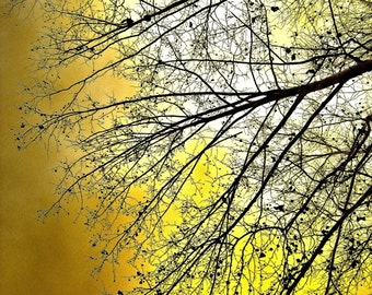 Minimalist tree orange branches bright decor yellow black fall barren ethereal surreal stormy sky - This is the end - fine art photograph