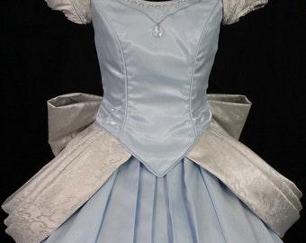 Adult Cinderella Parks Version Costume Custom Made