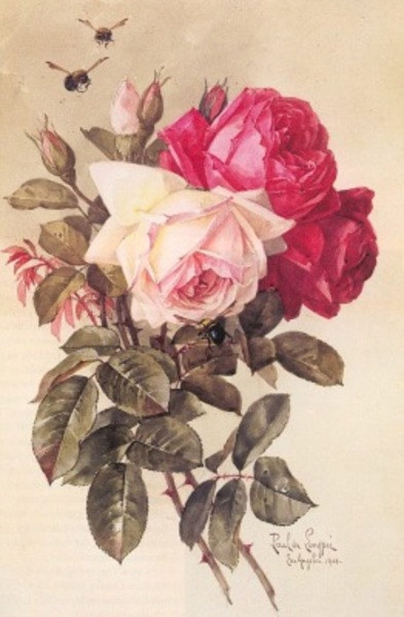 Roses - Cross stitch pattern pdf format