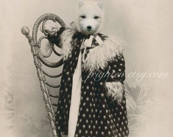 Arctic Fox Animal in Clothes Victorian Portrait Wall Art Print 8.5 x 11 inches