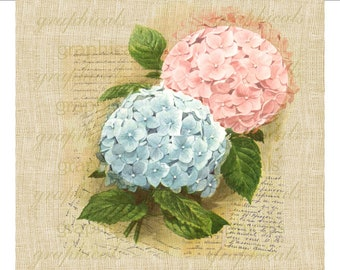 Hydrangea pink blue French ephemera Instant digital download graphic image for iron on fabric transfer burlap decoupage pillow tote No.1708
