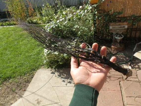 "RESERVED... 22"" Black Coral Branch. From Bali."