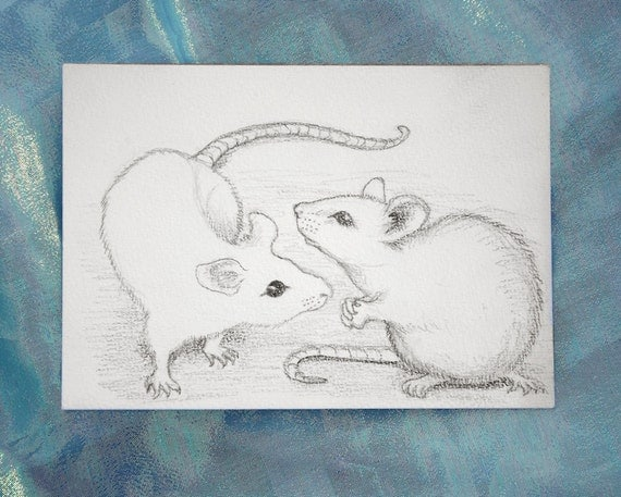 Mouse Pencil Drawing White Mice Original Pencil