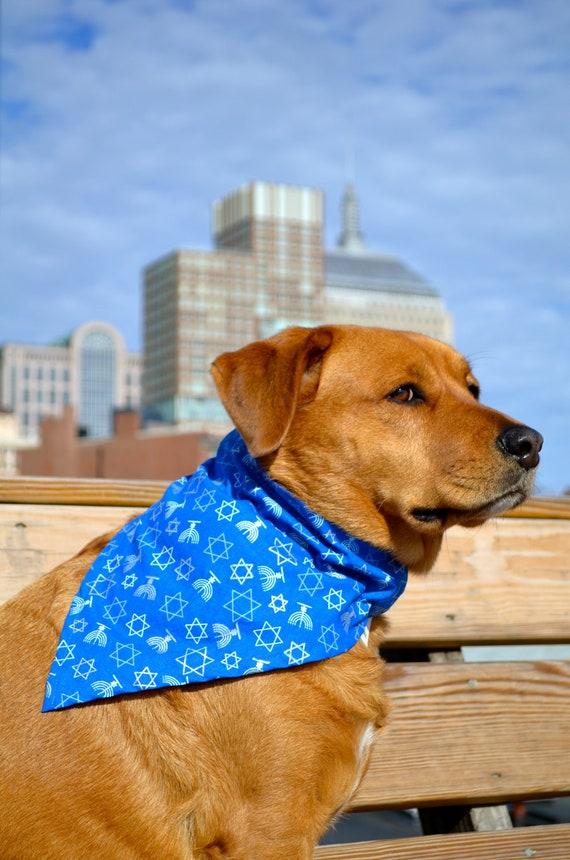 No tie dog bandana - Chanukah - Hanukkah - goes over collar - blue silver and white star of david and menorah - three sizes