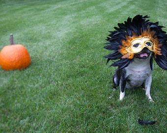 Dog Halloween photo, Boston Terrier photo, mask, costume, mask, dog photograph, portrait - Otis with Mask  - 5x7 fine art photograph