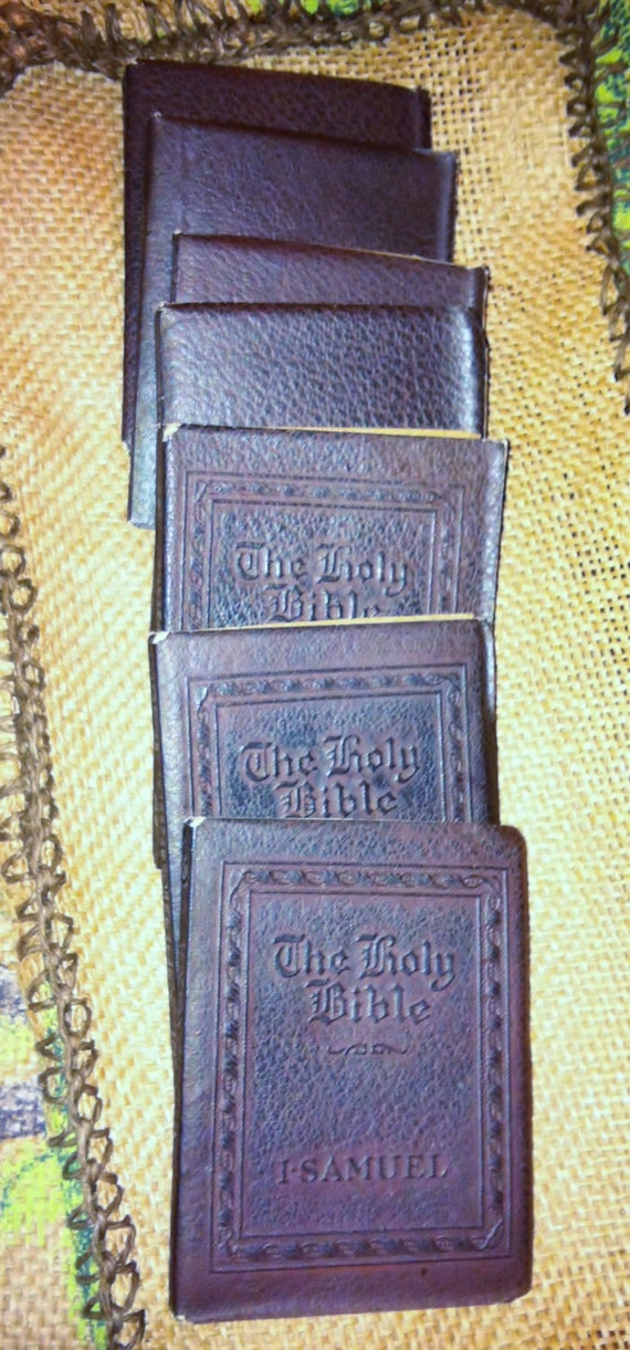 The Holy Bible Vol. XX  Little Leather Library - 7 Books