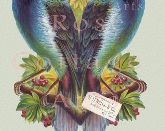 "Digital Download Tropical ""Birds of Paradise"" Die Cut Victorian Scrap Graphic Image"