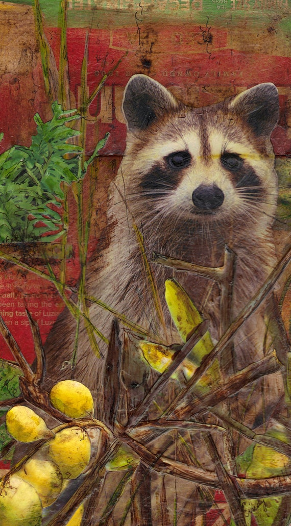 Original Collage, Near the Pier, Large Raccoon