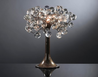 Transparent Clear bubble Table lamp with metal wires, desk lamp with clear bubbles lighter.