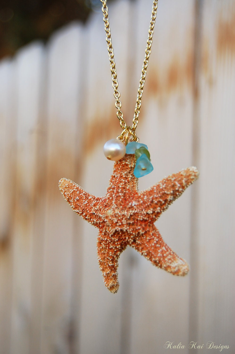 Real Starfish Necklace Real Starfish Sugar Starfish