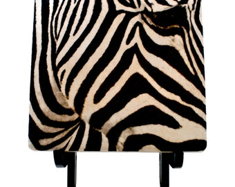 "Zebra Face black and white abstract 6"" Art Tile with wooden display Easel"