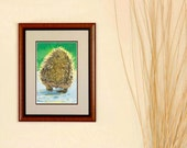 Hedgehog Signed Print -  From  the Original Painting Behind the Hedge, Unframed, Beautiful Digital Printing