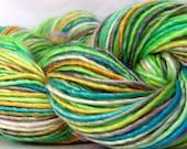 Yarn HandSpun Yarn Merino Wool Tencel single ply yarn Summer's End 161 yards
