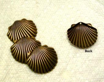 Brass Seashell Vintage Finish Medium Size  6 Pieces