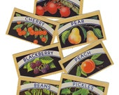 7pcs VINTAGE CANNING LABELS 1940s Gorgeous Color Set A