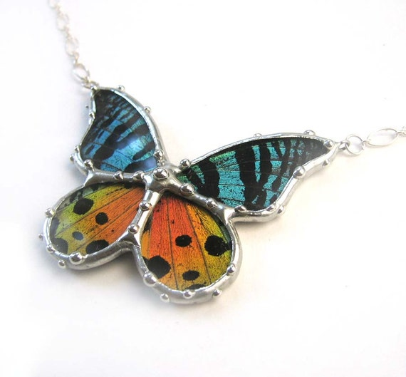 Real Butterfly Jewelry- Madagascan Sunset Moth Necklace - Colorful