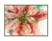 Watercolor One Poinsettia Christmas Note Cards, Notecards, Stocking Stuffers, Holidays, Boxed Set