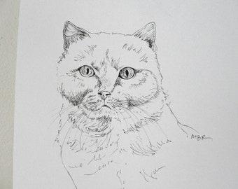 Cat Art Cat Drawing Original Art Ink Drawing Tom Cat Art Black and White Pet Art Cat Illustration 8 x 10