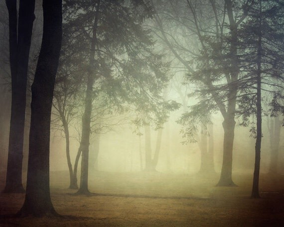 "Fall Photography, Fog, Forest Landscape Photography, Trees, Woodland, Autumn, Mist, Nature, Earth Tones, ""Inner Glow"""