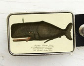 Crooked Tooth Whale Belt Buckle, Whale Belt Buckle