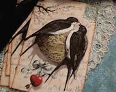Vintage Swallow Bird Nest Tags - Sweet Swallow Nest  - Heart, Valentine - Set of 8