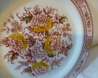 Ridgway Ironstone Staffordshire England Canterbury Red Yellow Transferware Plates Dishes Bowls 8 pcs