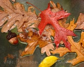 Fall Colors photography Autumn leaves prints. Fall Colors Wall Art Print Rustic Abstract Nature Photos Red Yellow Brown Cabin Home Decor