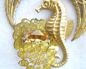 Seahorse Watching his Amber Jewel and Filigree Brass Handmade Necklace